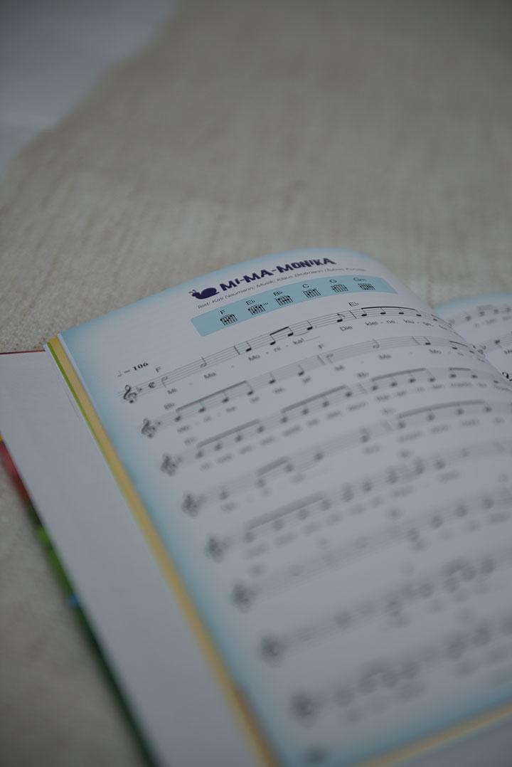 Liederbuch-Monika-Häuschen-Kati-Naumann-basteln-mit-Kindern-Hörspiel-lernen-Wissen-singen-Theaterstück-Kinder-Schule-Lehrer-2