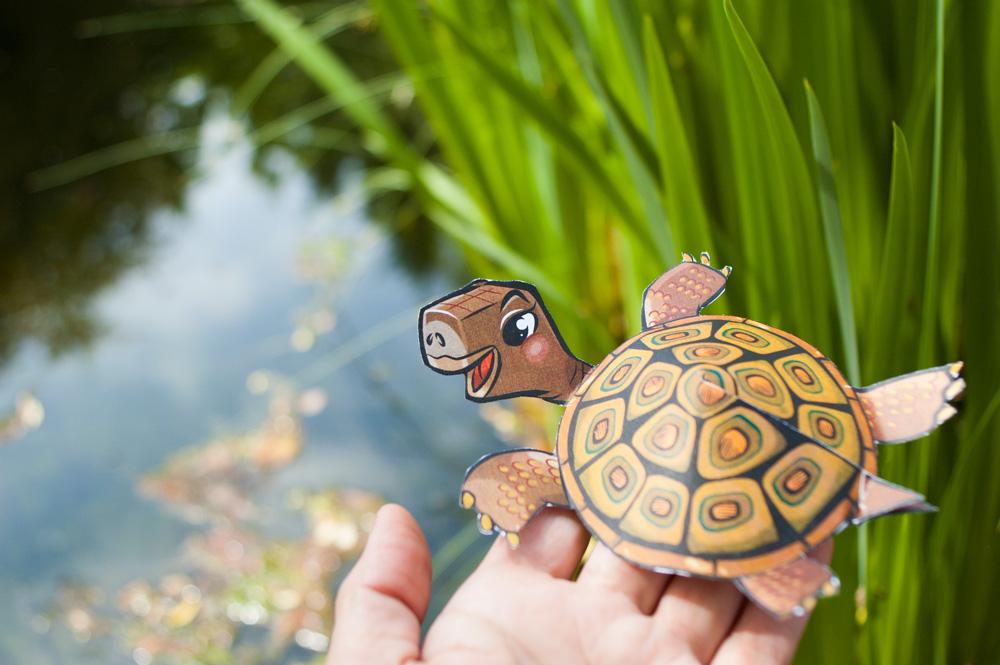Bastelbogen Schildkröte aus Die kleine Schnecke Monika ...